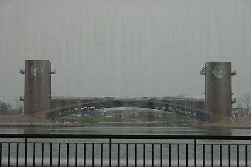 水のスクリーン越しに撮ってみたのですがなんかわけわからず。_| ̄|●