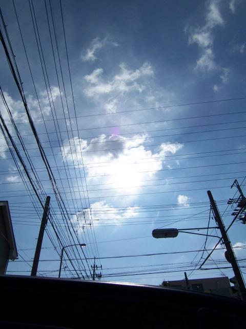 先日の天気がうそのようです。