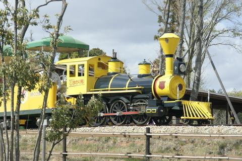 えらく小さいところを回ってた気がする汽車。